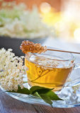 Elder flower tea Royalty Free Stock Photography