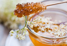 Elder flower tea Stock Photos