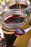 Elder jelly. Home-made elder jelly in glasses with fresh fruits Stock Images