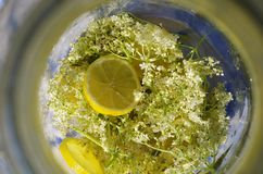 Elder lemonade stock images