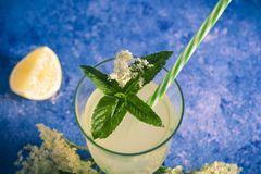 Elder lemonade - healthy and refreshing summer drink. Close up of homemade elderflower syrup in a glass with elder flowers. Summer stock photography