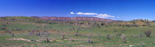 Elder Mountain Range. A panoramic view over the grassland in the foothills of the Elder Mountain Range in spring time. Flinders Ranges National Park, South Royalty Free Stock Photo