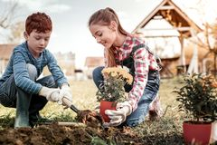 Elder red-haired sister and small brother gardening in free time stock photo