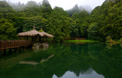Elder Sister Pond and gazebo at Alishan National Forest in Chiayi District, Taiwan Stock Image
