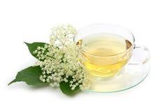 Elder tea. Isolated on white background Stock Photos