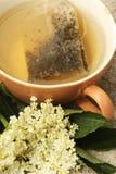Elder tea Stock Photography