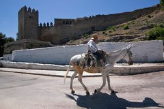 Elder walking in donkey close to the Tower of the Barbacana Royalty Free Stock Photography