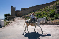 Elder walking in donkey close to the Tower of the Barbacana Royalty Free Stock Photos
