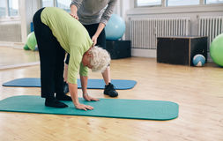Elder woman exercising with help from trainer. Senior women bending forward and touching her toes being helped by gym instructor. Elder women doing back exercise Stock Image