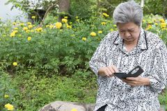 Elder woman holding mobile phone while sitting on bench in garde. Asian elder woman holding mobile phone while sitting on bench in garden. elderly female texting Royalty Free Stock Images