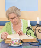 Elder woman reading a book Royalty Free Stock Photography