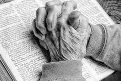 Elder Woman's Hands on Bible Stock Image