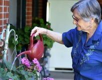 Elder woman working at her home garden watering plants. Portrait of an elder woman working at her home garden watering plants Stock Photos