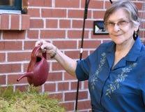 Elder woman working at her home garden watering plants. Portrait of an elder woman working at her home garden watering plants Royalty Free Stock Photography