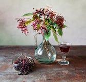 Elderberries royalty free stock images