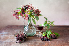 Elderberries Royalty Free Stock Photo