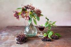 Elderberries royalty free stock photo