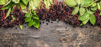 Elderberries bunch with green leaves on rustic wooden background, top view Royalty Free Stock Photos