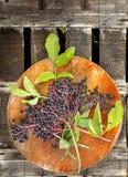 Elderberries bunch on round wooden board Royalty Free Stock Photo