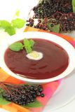 Elderberries soup with mint Royalty Free Stock Images