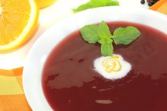 Elderberries soup with whipped cream royalty free stock images