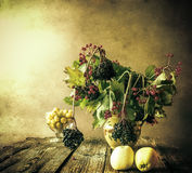 Elderberry κλαδάκι ζωής ανθοδεσμών φθινοπώρου ακόμα Στοκ Εικόνες