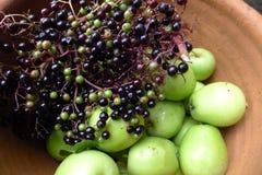 Elderberry и груша Стоковые Изображения RF
