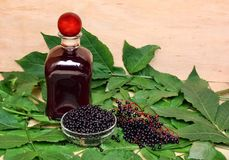 Elderberry стоковое изображение rf