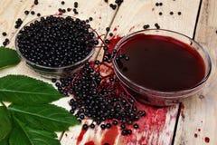 Elderberry Στοκ εικόνα με δικαίωμα ελεύθερης χρήσης