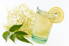Elderberry flower drink Royalty Free Stock Photo