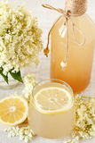 Elderberry flower drink with sliced lemon Stock Photo