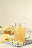 Elderberry flower drink with sliced lemon Stock Photography