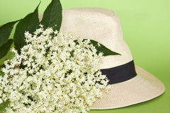 Elderberry flowers and summer hat. White elderberry flowers on summer hat Royalty Free Stock Photos