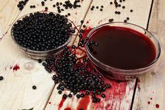 Elderberry fruits Stock Photo