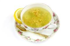 Elderberry herbata - zdrowa medycyna Obrazy Royalty Free