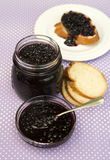Elderberry jam. In a small glasses bowl royalty free stock photography