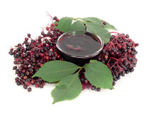 Elderberry jelly Royalty Free Stock Photo