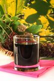 Elderberry juice Stock Images