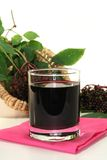 Elderberry juice Royalty Free Stock Images