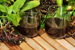 Elderberry Juice Royalty Free Stock Image