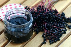 Elderberry marmelada stock image