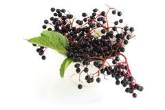 Elderberry in mortar Royalty Free Stock Photo