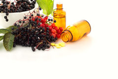 Elderberry in mortar, viburnum, medicines. Homeopathy concept. Royalty Free Stock Images
