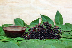 Elderberry Royalty Free Stock Photography