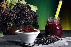 Elderberry sambucus nigra green background royalty free stock photography