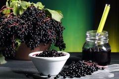 Elderberry sambucus nigra zieleni tło Fotografia Stock