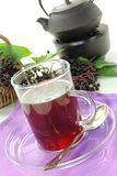 Elderberry tea Stock Photos