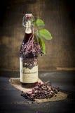 Elderberry wine and elderberries on wooden table Stock Photos