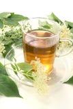 elderflower τσάι στοκ φωτογραφίες