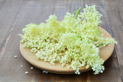Elderflower blossoms on wooden background Royalty Free Stock Photos